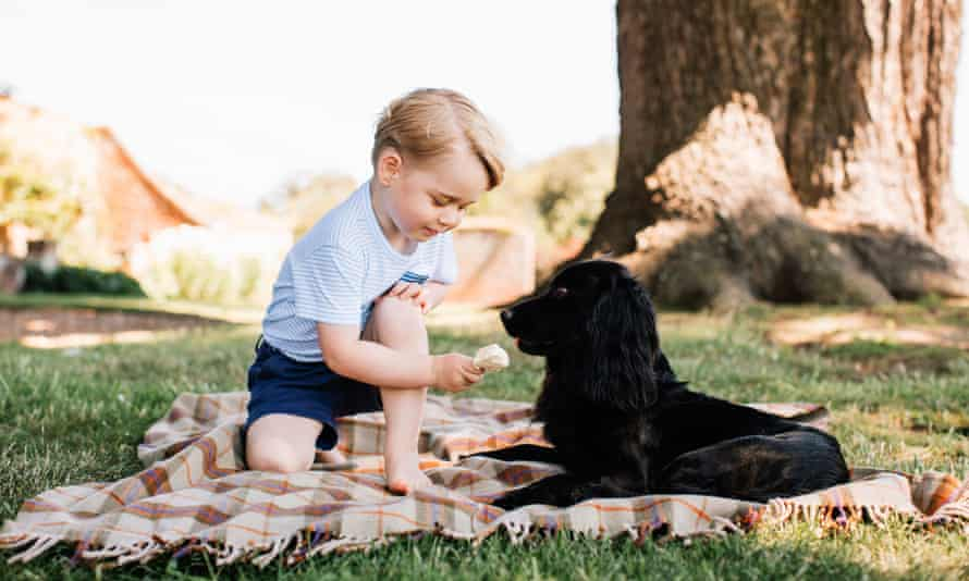 Prince George appears to feed ice cream to the family dog, Lupo, at their Norfolk home.