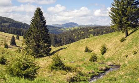 Schweinebühl in Todtnauberg, Black Forest, Germany