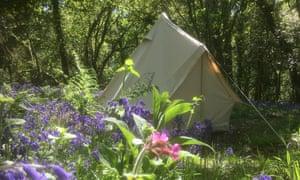 Cilrath Wood campsite