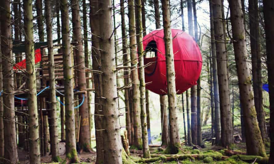 Dragon's Egg at Red Kite Tree Tents, Builth, Wales