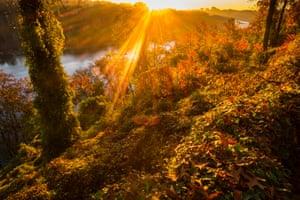 The sun streaks through the fall foliage at sunrise along the Potomac River in Arlington, Virginia