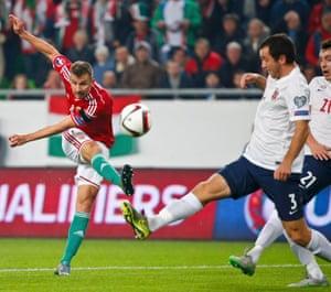 Hungary's Tamas Priskin scores.