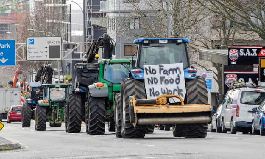 Tractors are driven by farmers and protesters on the motorway into Auckland.