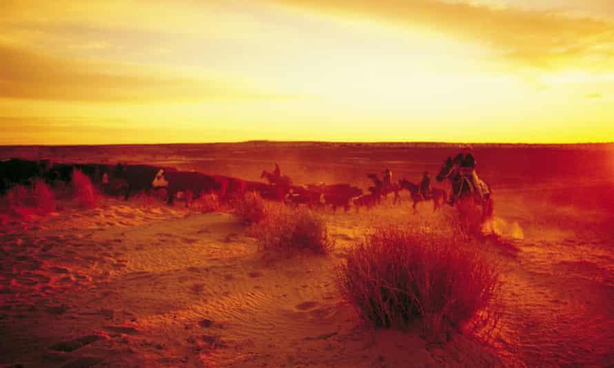 cattle ranch Australia