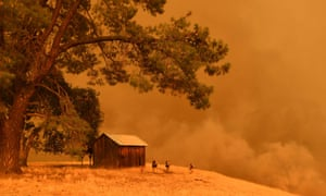 Firefighters watch as flames climb a hillside in Guinda, California, on 1 July.