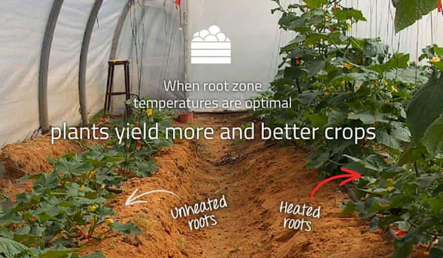 Roots Sustainable Agriculture Technologies