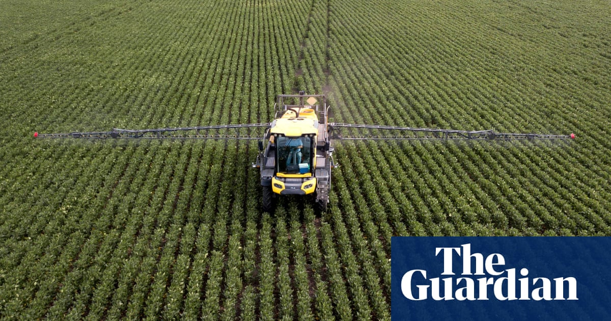 Microbes and solar power 'could produce 10 times more food than plants'