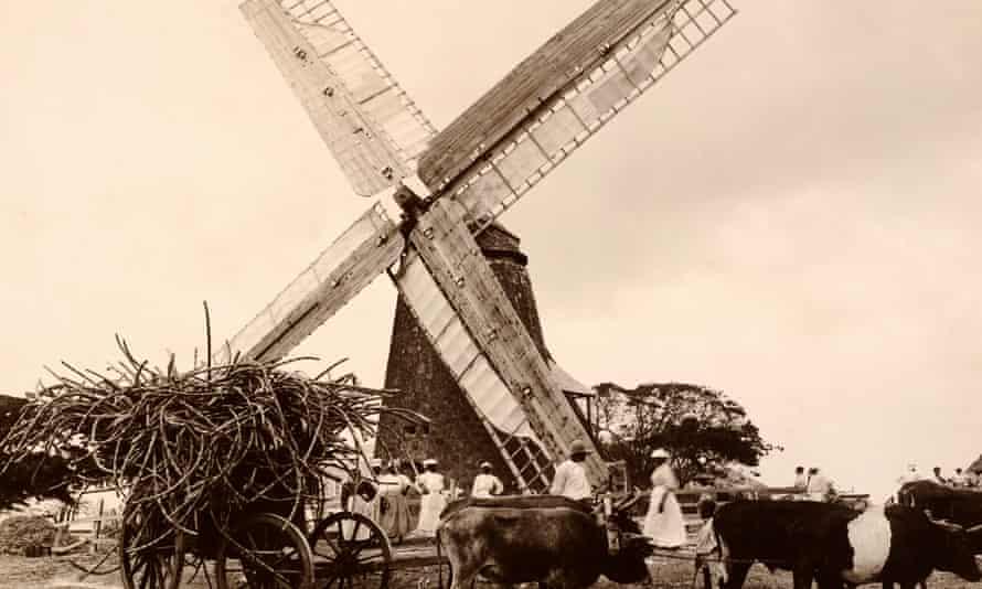 A slave plantation in Barbados, circa 1890