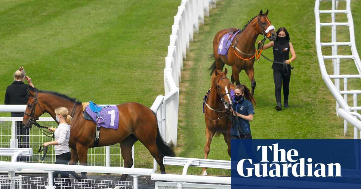 Talking Horses: time for racing industry to talk about motherhood