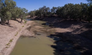 There are growing calls for a royal commission into controversial Murray-Darling River water buybacks