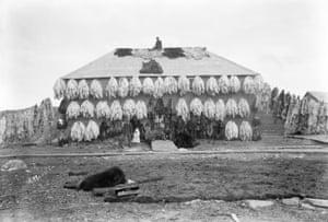 Hudson Bay Company store covered with furs, Churchill, Manitoba, ca. 1906 - 1909