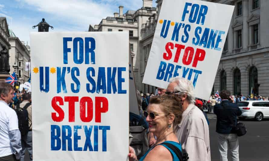 Protestors with anti-Brexit placards