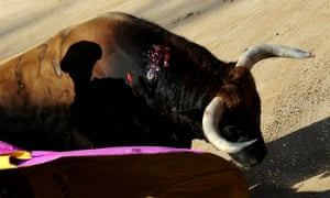 Pacma was founded 16 years ago to put an end to bullfighting