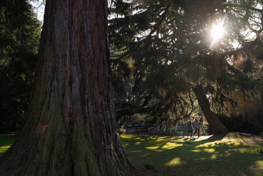 Beacon Hill park in Victoria city