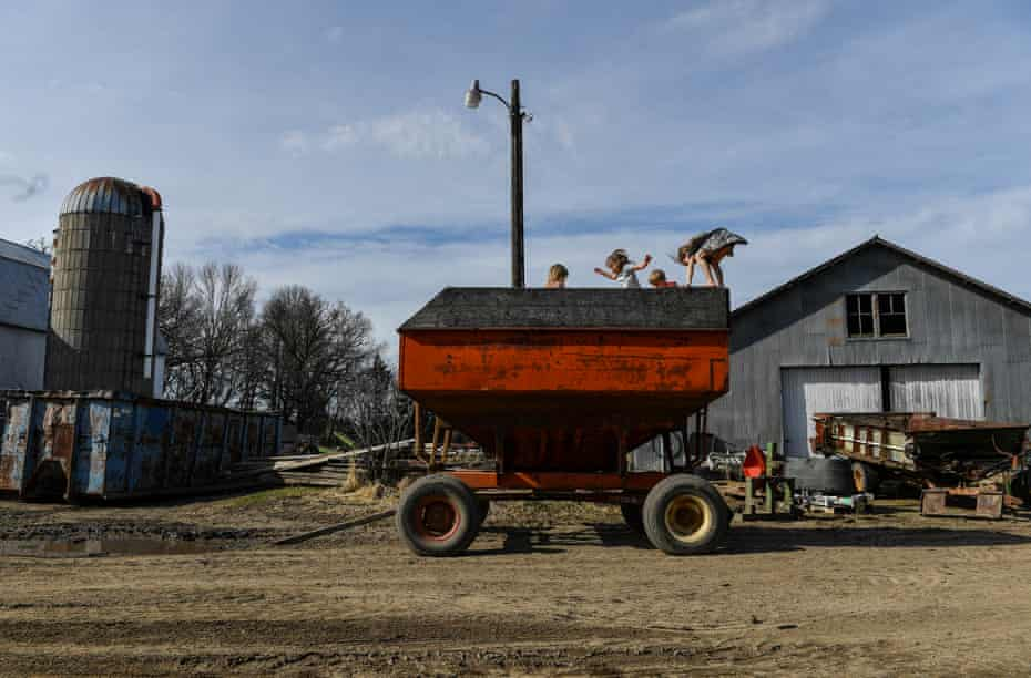 The Krocak kids, from left, Delaney, 2, Katie, 5, Daniel, 9, and Ella, 7, play on a gravity cart filled with corn, in Montgomery, Minnesota dairy farm, April 2019