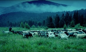 Screengrab of a green landscape and herd of goats, a publicity screengrab from the documentary Life in a Day.
