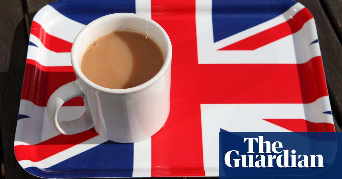 Milk? Sugar? Microplastics? Some tea bags found to shed billions of particles - The Guardian