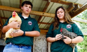 Taylor King and Mary Elizabeth Grissette, students at Goshen high school. The students enrolled in the agriscience tech program are experienced farmhands by 15.