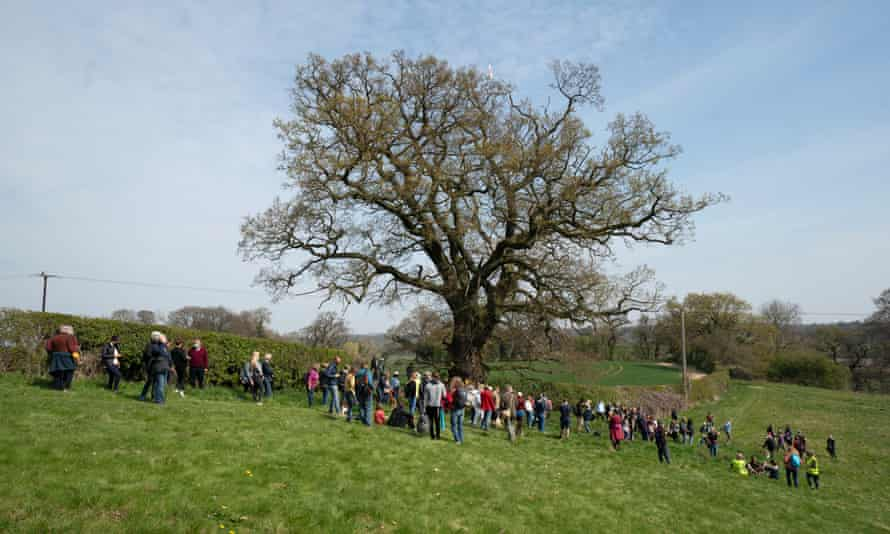 A gathering of residents at the tree known as Darwin's oak.