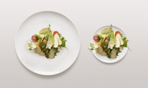 One large plate and one small plate, both holding the same amount of food