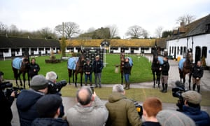 Only one of these horses has been coughing; Epatante, second from left, with other Champion Hurdle contenders at Nicky Henderson's stable last week.