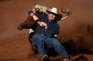 A competitor takes part in the steer wrestling event at the Mount Isa Mines Rotary Rodeo in Mount Isa, Australia