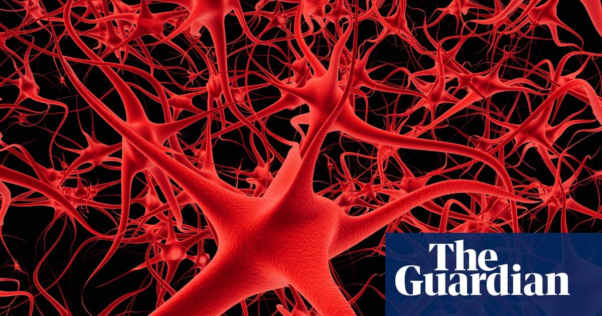 New drug raises hopes of reversing memory loss in old age   Science