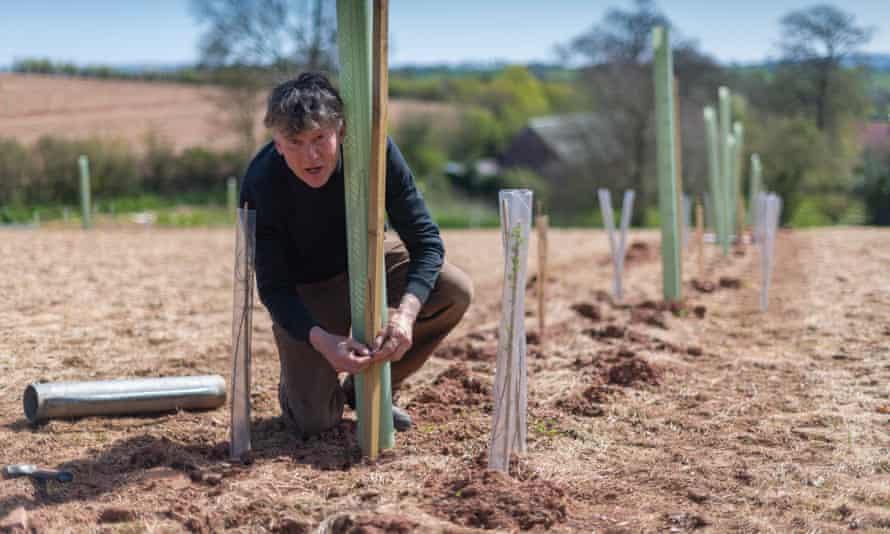 Andy Gray, Elston Farm, Devon