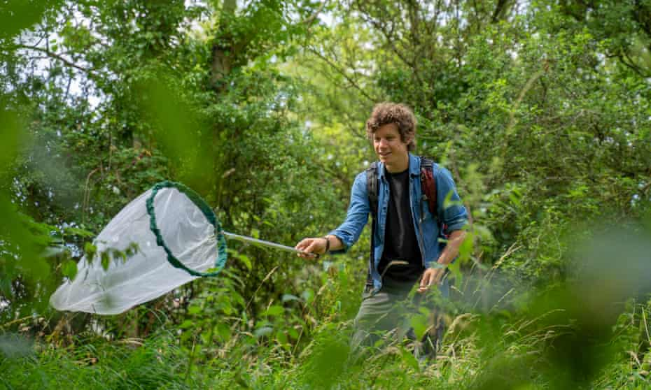 Identifying butterflies in Bristol, part of Forestry England's Big Forest Find, the country's largest survey of forest wildlife.