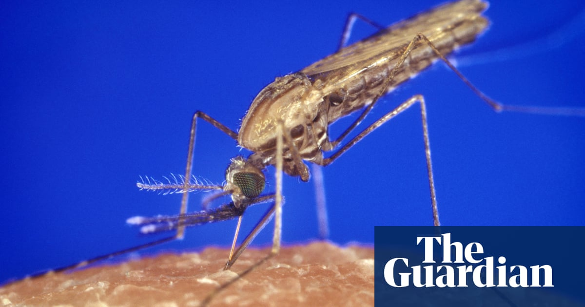 How Myanmar became an example to the world in the battle against malaria