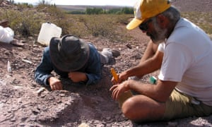 Spanish and Argentine investigators working on the extraction of the remains of three dinosaurs in the Argentine province of Neuquen.