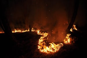 A forest fire in the village of Bhati, in the Kangra district