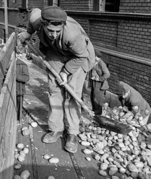 Potatoes are delivered from the countryside to supply the rebels