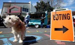 A dog waits outside a polling station during the general election in Auckland