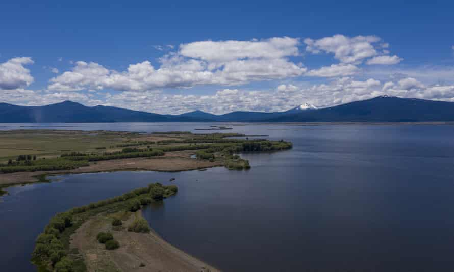 Most of the suckerfish migrate every year from Upper Klamath Lake into tributary rivers to spawn.