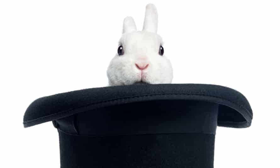 The head of a white rabbit sticking out of a top hat