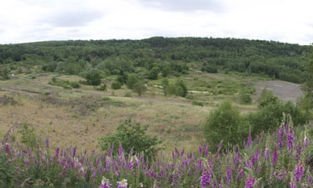 The Messel quarry as it is now