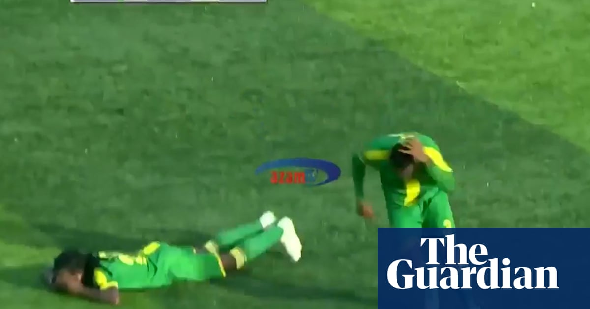 Buzz off: Players dive for safety as bees swarm football pitch in Tanzania – video