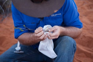 Bush Heritage ecologist Ben Parkhurst holding a native mouse