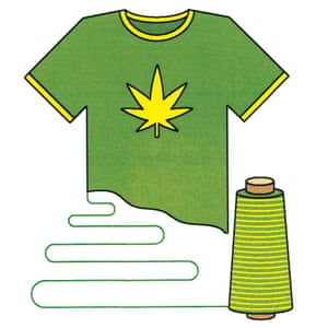 Beyond its use in clothing, hemp has attracted attention for its chemical content.