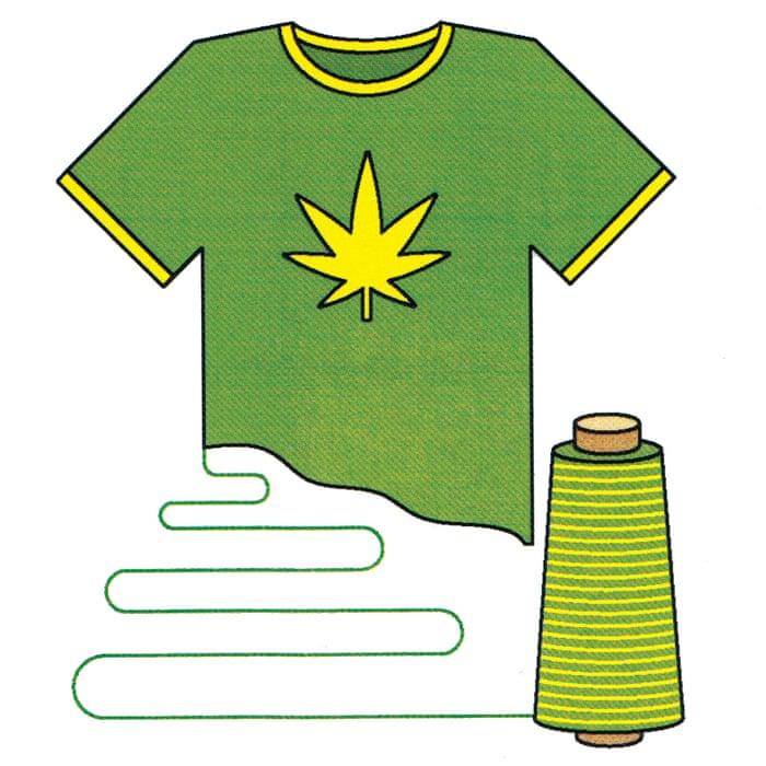 The hemp revival: why marijuana's cousin could soon be big