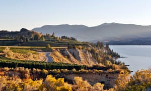 Penticton Naramata Okanagan Valley Vineyard