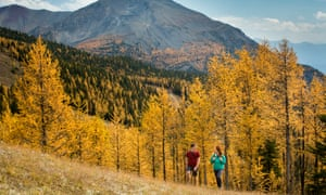 Hiking in Larch Valley