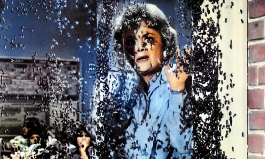 Olivia de Havilland as a schoolteacher attacked by killer bees in The Swarm (1977).