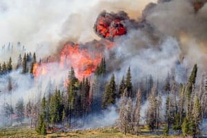 A wildfire sweeps Wyoming's Shoshone national forest in the US, 2016
