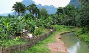 A farm alongside a small tributary of the Nam Lik in Namai village, Feung district, Vientiane province, Laos