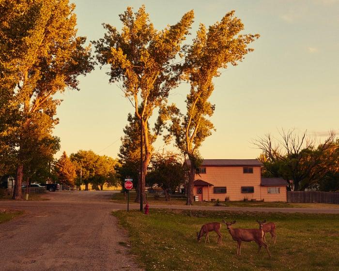 Under siege by liberals: the town where everyone owns a gun
