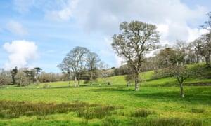 Penrose estate près de Helston à Cornwall