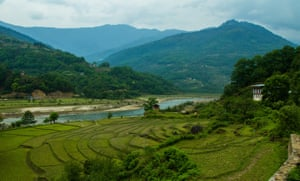 Hazlenut Mountain Gallery, Bhutan IMG 5200 Hazelnut Mountain, Bhutan Gurula, a native farmer of Trashiyangtse Gurula's plot in Bumdeling