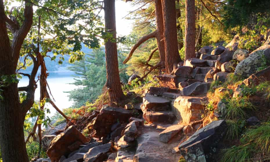 """Beautiful Wisconsin summer nature background.Ice age hiking trail and stone stairs in sunlight during sunset hours. Devil""""u2019s Lake State Park, Baraboo area, Wisconsin, Midwest USA."""